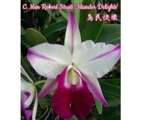 Cattleya Men Robert Strait 'islander Delights'